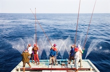 MSC publishes handbook to mark World Tuna Day